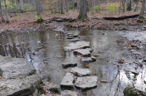 Stepping Stones on Birch Creek at Glen Helen, Yellow Springs, Ohio